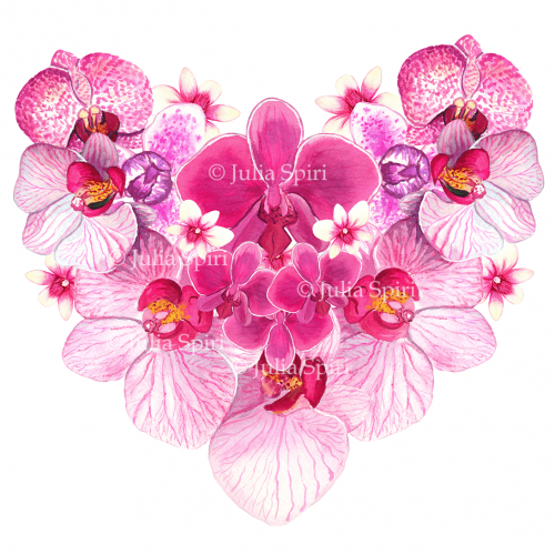 Heart of Orchids